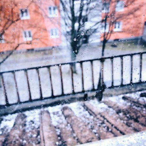 Vue de ma fenêtre - Temps pluvieux